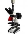 BM-20AYC电脑型落射荧光显微镜