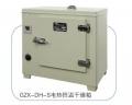 电热恒温干燥箱台式.260-TBS