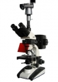 BM-21AYS数码落射荧光显微镜
