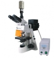 BM-19AYC电脑型荧光显微镜