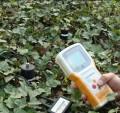 土壤水分记录仪/快速土壤水分仪TZS-3X